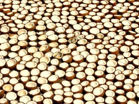 Warum gilt Kokosöl als so gesund, obwohl es so viele gesättigte Fettsäuren enthält?